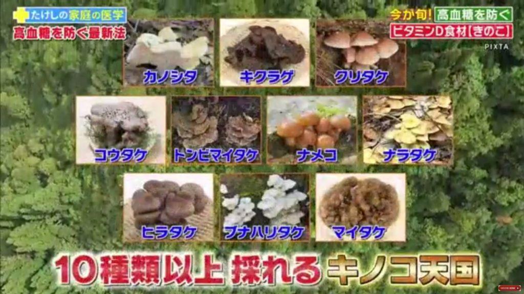 新潟県魚沼地域は10種類以上採れるキノコ天国